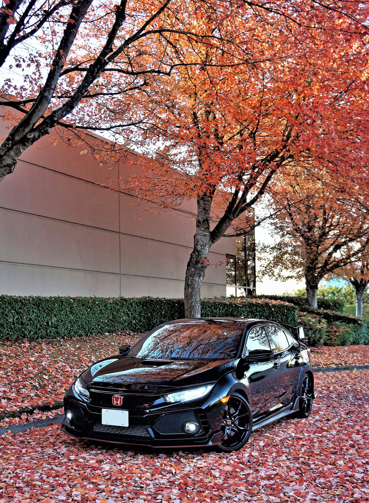 2018 Honda Civic Type R Road Test Review   The Car Magazine